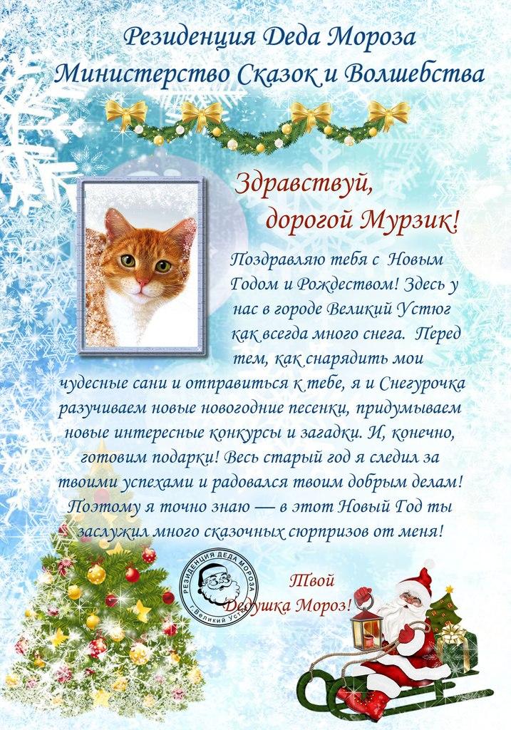Новогодние подарки из интернет-магазина dmoroz 89